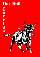 black bull-corrida 2