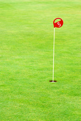 Golf practice putting hole marked with a red sign