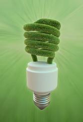 Energy efficient fluorescent light bulb