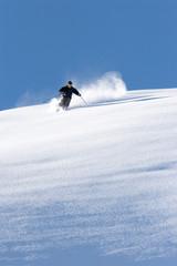 Skieur poudreuse 2