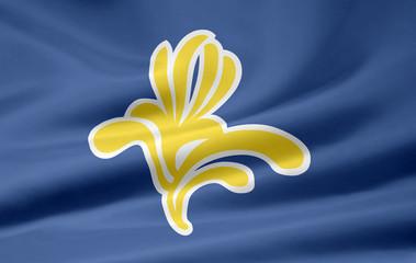 Flagge der Region Brüssel - Belgien
