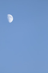 Waxing Gibous Moon in daylight