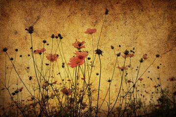 Obraz old-fashioned artistic flower - fototapety do salonu