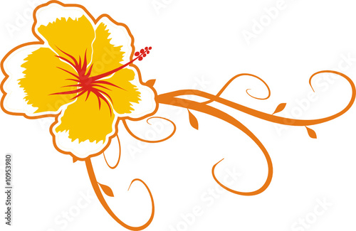 Flor Hawaii Stock Image And Royalty Free Vector Files On Fotolia