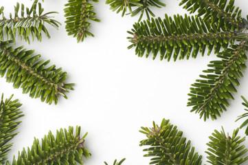 Spruce frame on white background