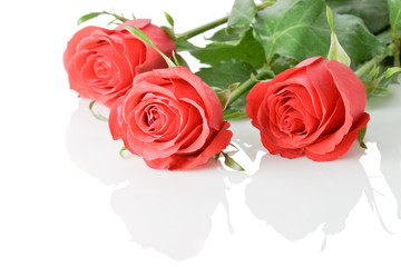 three red roses boquet