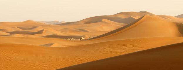Photo sur Toile Desert de sable Desert wanderers