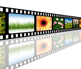 Natur Filmstreifen