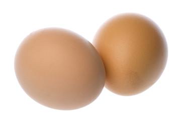 Chicken Eggs Macro Isolated