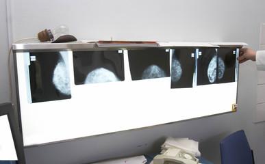 radiology 2