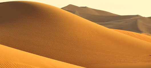 Poster de jardin Desert de sable golden dune