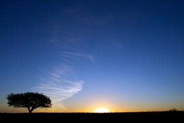 Cielo nella Pampa Argentina