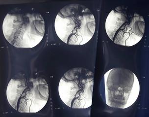radiology new 5
