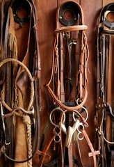 Horse riders complements, rigs, reins,  leather over wood