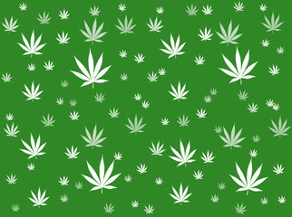 """Fond """"Feuilles de Cannabis"""""""