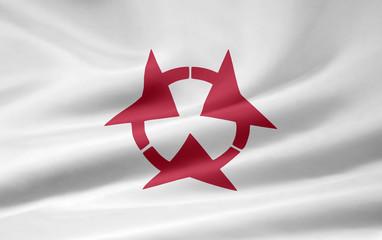 Flagge von Oita - Japan