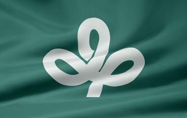Flagge von Miyagi - Japan