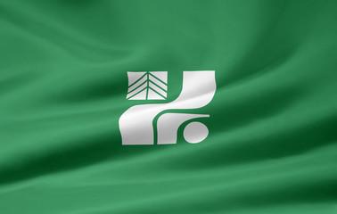 Flagge von Tochigi - Japan