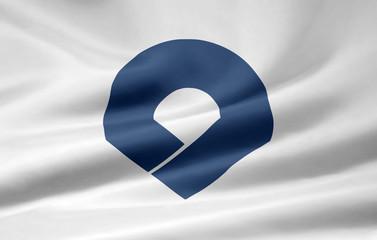 Flagge von Wakayama - Japan