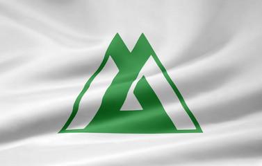 Flagge von Toyama - Japan