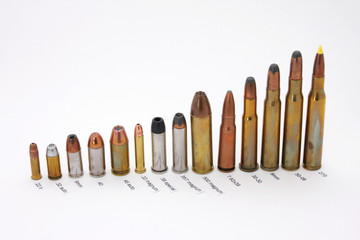 Cartridges labeled with caliber