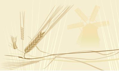 wheat ears whith windmill