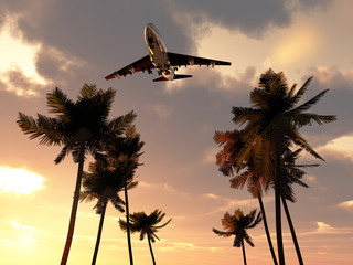 Plane In Tropical Sky 10