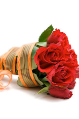 red roses isolated on white. space for text.