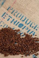 café récolté en Ethiopie