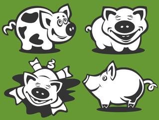 four cartoon piggies