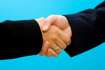 Business - shaking hands