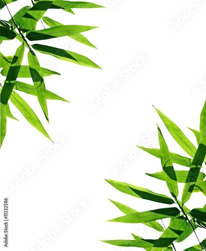 Bamboo Zen Atmosphere Photo Libre De Droits Sur La