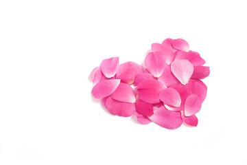 rose petals in heart shape