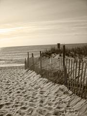 beach fence dunes ocean sand
