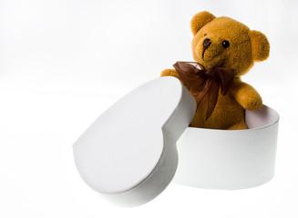 The teddy bear from the heart-box