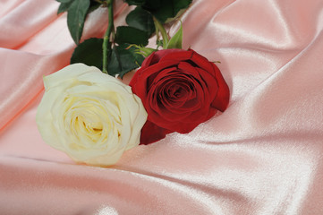 two rose on cream satin