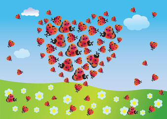 Spoed Fotobehang Lieveheersbeestjes Heart of summer from ladybirds