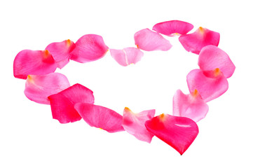 Pink rose flower petals in heart shape