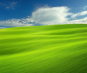 Waves in the green field