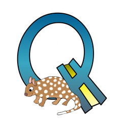 Alphabet - Letter Q - With A Quoll - Isolated On White
