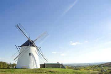 Windmühle in Weingegend