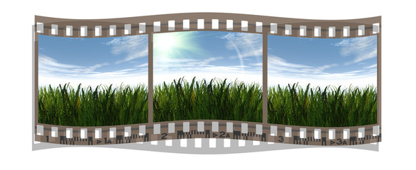 film with 3 images of green grass and blue sky