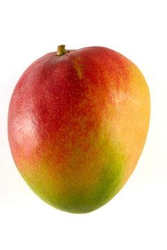 mangue 2
