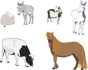 farm animals - collection for designers 2