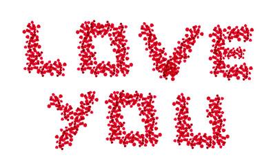 Love You en pétales de roses