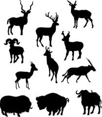 silhouette of horned animal