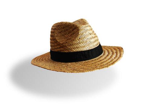 Chapeau de Paille 1