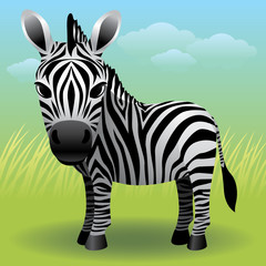 Photo sur Toile Zoo Baby Animal collection: Zebra. More animals in my gallery.