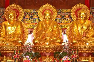 Three golden Buddha images