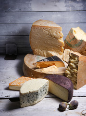 cheese - composition